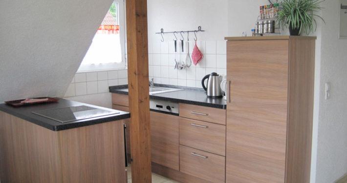 Die offene Küche der Ferienwohnung Seeblick Imperia in Konstanz-Dingelsdorf am Bodensee ist mit einer Spülmaschine und einem kleinen Backofen ausgestattet.
